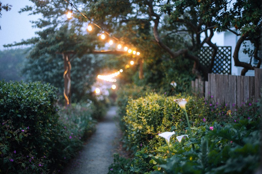 A garden path with overhead lighting during sunset